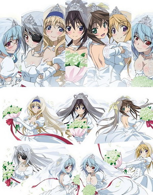 IS: Infinite Stratos 2 - Infinite Wedding