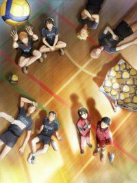 Seiin Koukou Danshi Volley-bu
